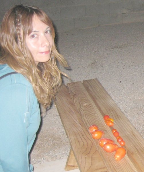 I never thought harvesting tomatoes at 3am could be so much fun! : ) And no tomtato eating insects either! The Diatomaceous Earth is doing a great job!<br> <br> Harvested 6/16/09; WooHoo!!
