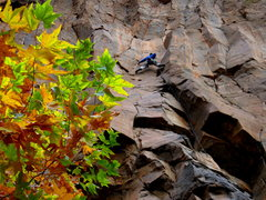 Rock Climbing Photo: Dan Foster on Crescent Moon
