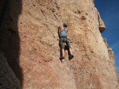 Rock Climbing Photo: Shelf Road - Cactus Cliff