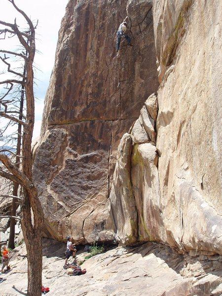 Rock Climbing Photo: Reptiles eat Nuts