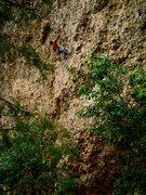 Rock Climbing Photo: Me climbing Zoaster Toaster in Maple