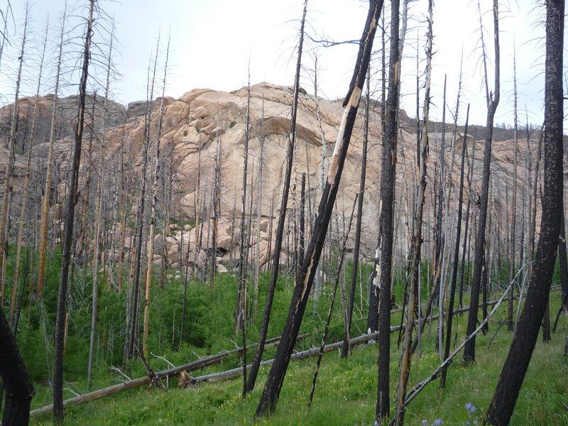 Rock Climbing Photo: The Quarry Wall.