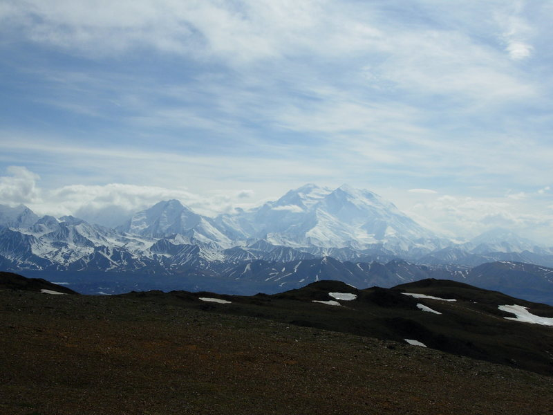 Rock Climbing Photo: Denali from above Eielson Visitor Center.
