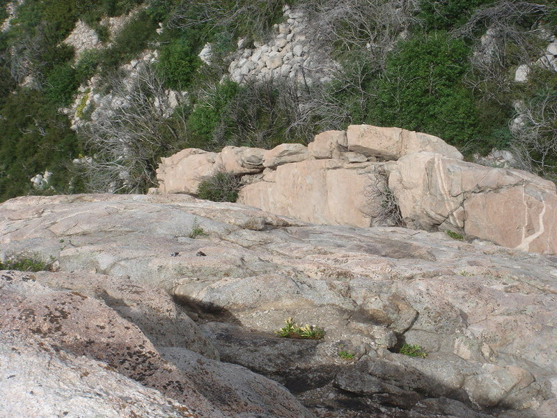 View from the top of Scot Rock, looking down at the anchor used to rap before climbing the west face.
