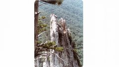 Rock Climbing Photo: Picture 011.jpg