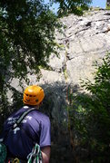 Rock Climbing Photo: Looking up Witches Brew.
