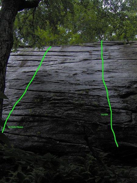 Rock Climbing Photo: No Bolts Please and Joyride