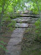 Rock Climbing Photo: Silver Dollar