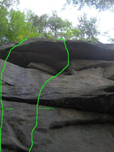 Tree Crack and Go-Go Gadget Arm