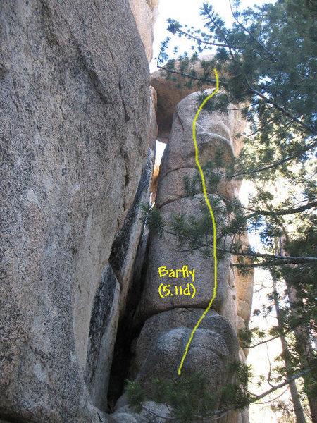 Rock Climbing Photo: Barfly (5.11d), Keller Peak.