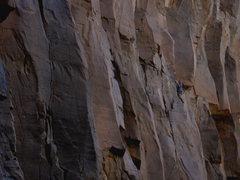 Rock Climbing Photo: Wade Forrest cruising up BFAM.