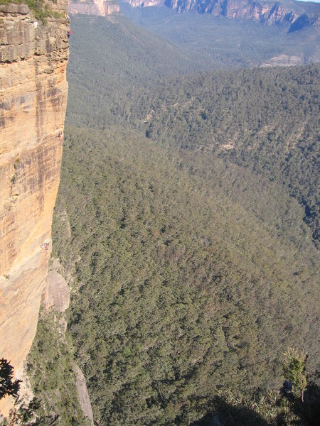 Pitch 8 of Hotel California (22, 5.11a). Grose Valley, Blue Mtns, NSW. This 10 pitch sports climb is so named becasue it never ends