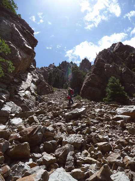 The approach to Lonely Challenge Wall looked like this, minus the guy with the cooler (updated approach beta in the area&@POUND@39@SEMICOLON@s description).<br> Strone crag is the low angle buttress to the right of the picture (routes around the corner), the Standard Ridge is the next rib to the left all the way in the background. <br> Lonely Challenge is the left (east) face of this rib behind the large pine trees.