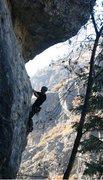 Rock Climbing Photo: Shark Club 2 - Kip Henrie