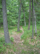 Rock Climbing Photo: Trail to Greatest Bluff off the left side of the p...