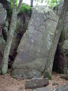 Rock Climbing Photo: Not sure what this is, can you place this Eggbert?...
