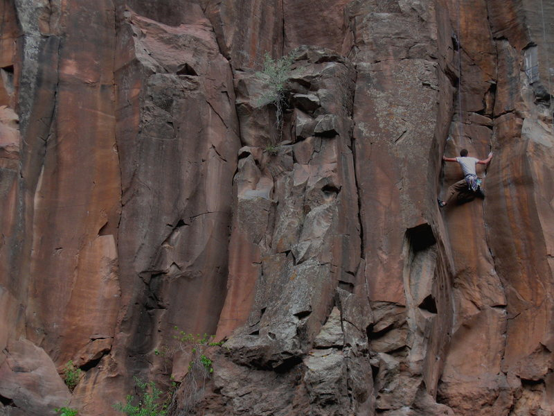 Rock Climbing Photo: Wade Forrest cleaning it up...