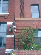 Rock Climbing Photo: another day hard at work installing signs around t...