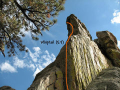 Rock Climbing Photo: Whiptail (5.9), Holcomb Valley Pinnacles.