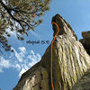 Whiptail (5.9), Holcomb Valley Pinnacles. <br>