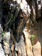 Rock Climbing Photo: Mike S, shaking out mid crux!