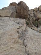 Rock Climbing Photo: Close up