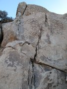 Rock Climbing Photo: Mr. Bunny vs. Six Unknown Agents