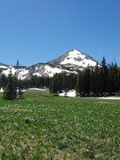 Rock Climbing Photo: meadow