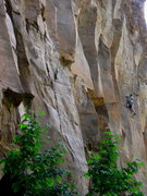 Rock Climbing Photo: Josh Janes gunning and plugging.