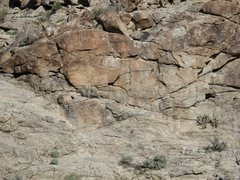 Rock Climbing Photo: Granite Springs petroglyphs
