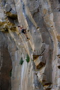Rock Climbing Photo: Josh about to do the big moves out right to the ar...