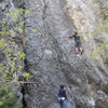 Beth belaying Venda on Serengeti. Call of the Wild goes up the obvious slab above Beth.
