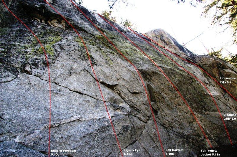 Spring Wall main slab topo