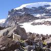 Mountain goat on Curtis Ridge. July '09.