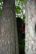 Rock Climbing Photo: Timmy on the onsight!