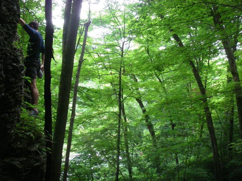 Rock Climbing Photo: Nick starting up Tarzan