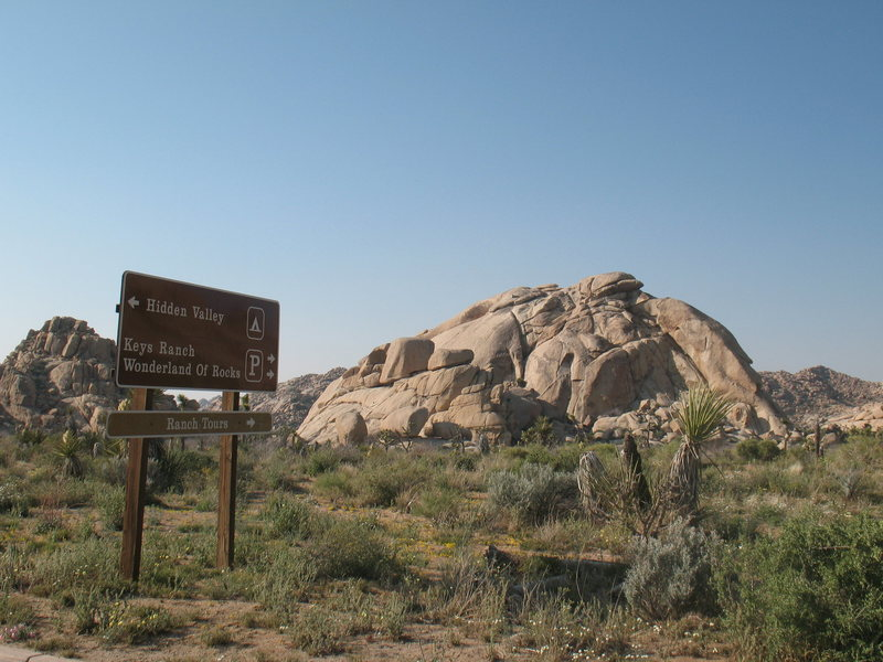 Echo Rock from the road, Joshua Tree NP