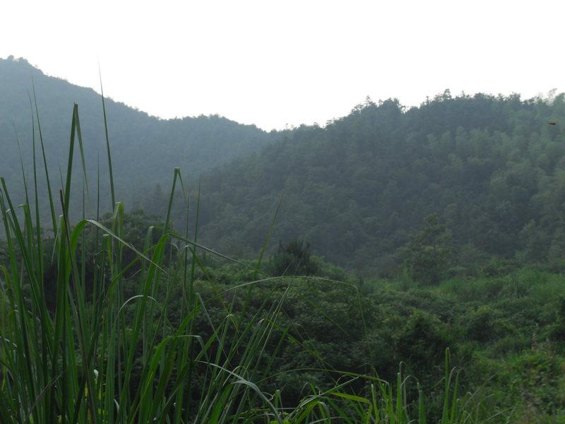 Surrounding valley.