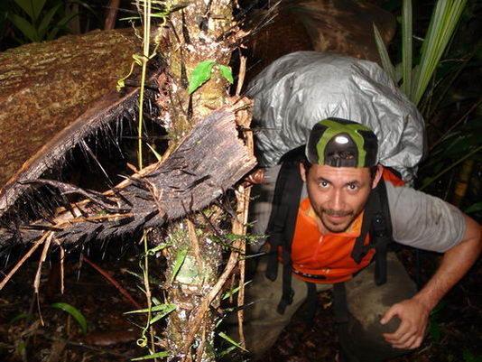 Rock Climbing Photo: wild jungles in Doyle's Delight.