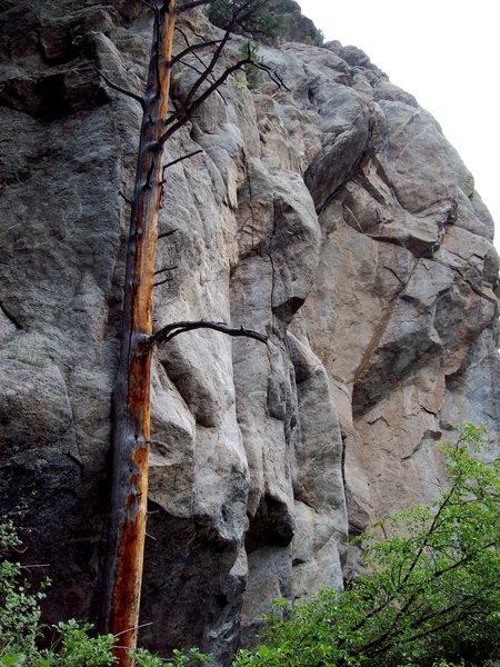 Rock Climbing Photo: Law of Physics Crag, Boulder Canyon, Colorado.
