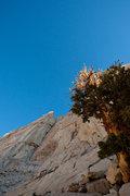 Rock Climbing Photo: Red Baron Tower, with Milktoast Chimney