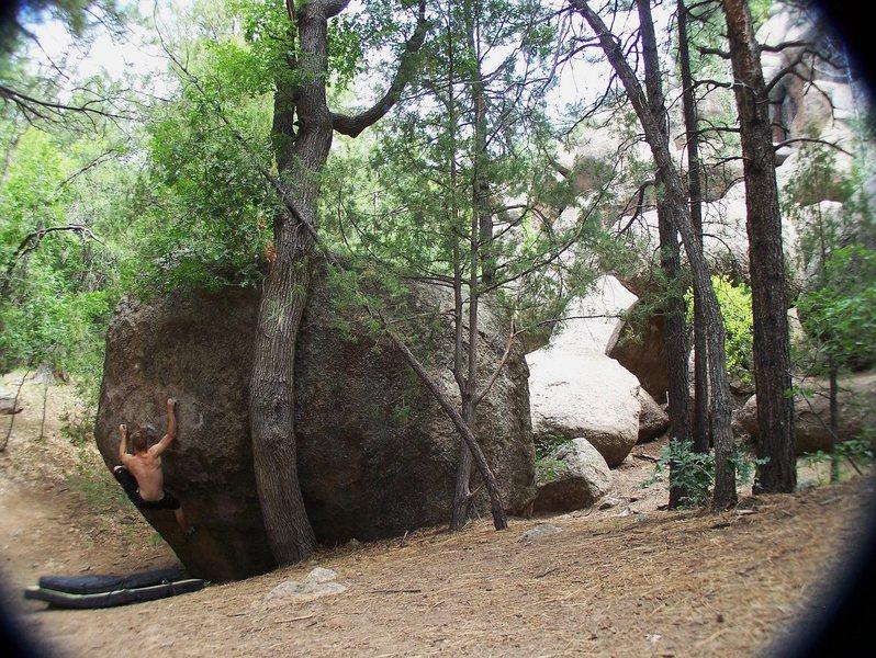 Rock Climbing Photo: Flyswatter