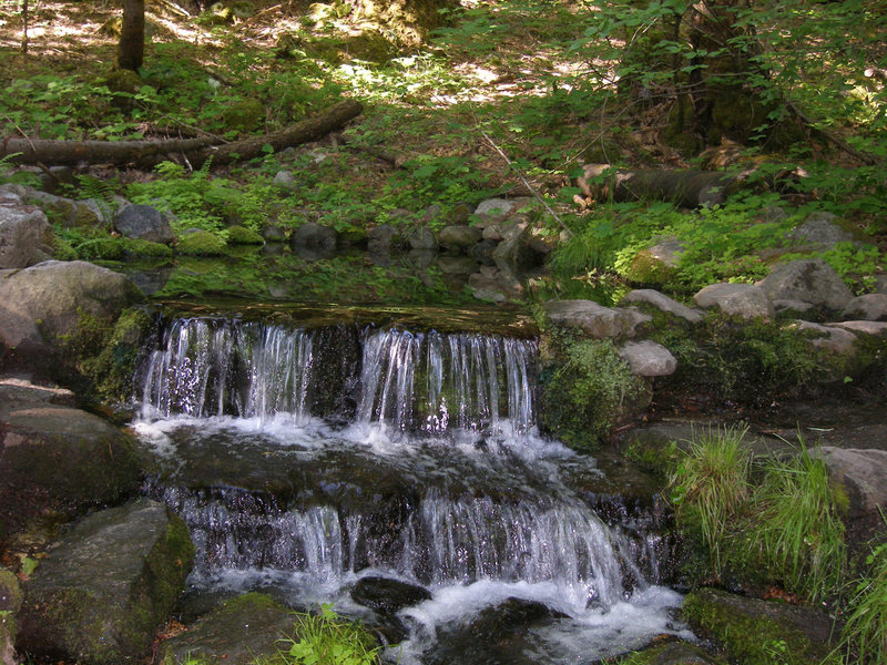 Rock Climbing Photo: Fern Springs