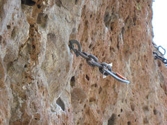 Rock Climbing Photo: Loose bolt (now replaced) on Frog Prince (aka Babi...