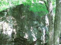 Rock Climbing Photo: Mossy boulder at the base of the Ice Fall Area.