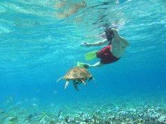 Rock Climbing Photo: Me almost getting run over by a sea turtle.  Caye ...