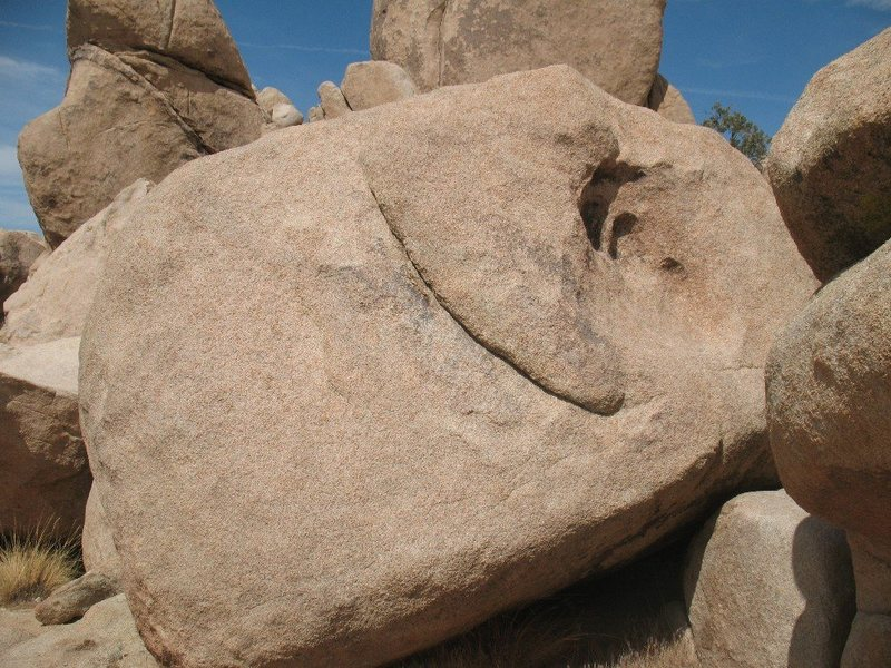 Van Gogh's Ear, Joshua Tree NP  <br>