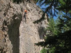 Rock Climbing Photo: DI cruising the route.