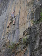 Rock Climbing Photo: Still on an 11a