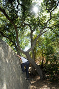 Rock Climbing Photo: Matthew Fienup on Suave, the Slab Boulder, Skofiel...